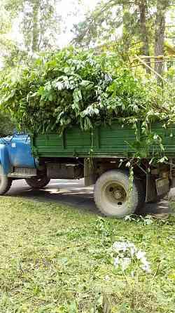 Вывоз листьев, веток, травы, грунта, земли, Ирпень, Буча, Гостомель. Ирпень